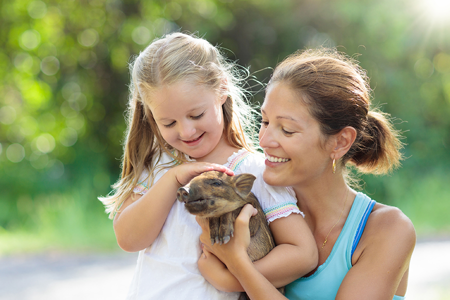 Petting Zoo & Donations with Caruso Cares