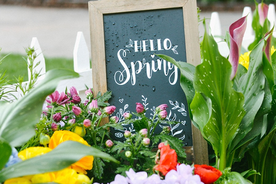 What To Do, See & Eat This Spring